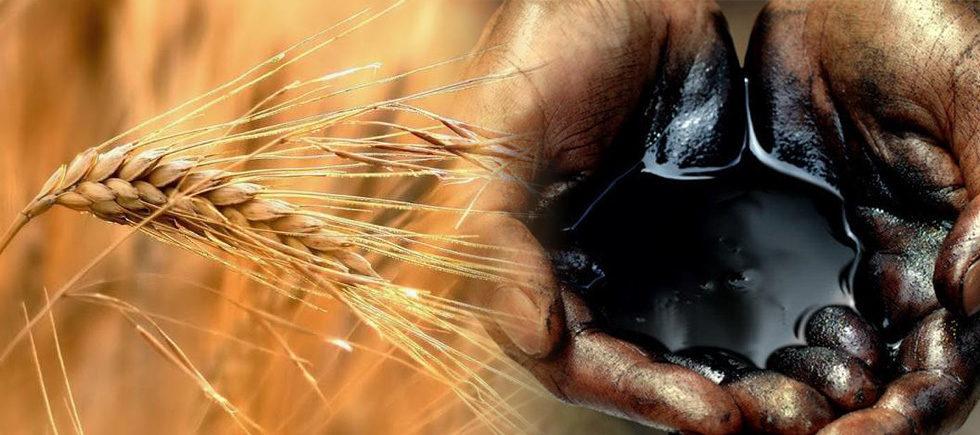 Export dalla Russia: grano e petrolio