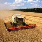 La Russia stabilisce il proprio record per l'esportazione di cibo